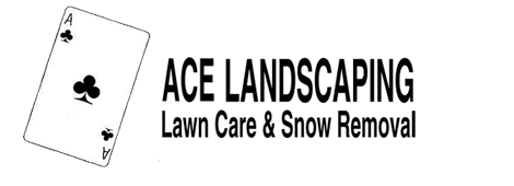 Site analysis  | Ferndale, MI | Ace Landscaping Lawn Care & Snow Removal | 248-548-5570