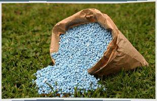 Slit seeding | Ferndale, MI | Ace Landscaping Lawn Care & Snow Removal | 248-548-5570
