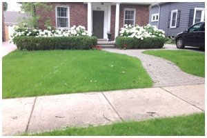 Grading | Ferndale, MI | Ace Landscaping Lawn Care & Snow Removal | 248-548-5570