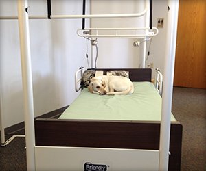 Bed Trapeze System