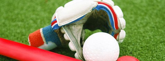 Hockey Ball and Gloves