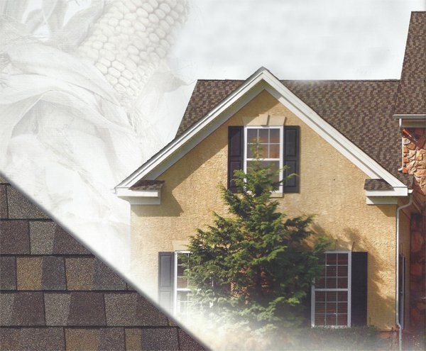 Reese Roofing Roof