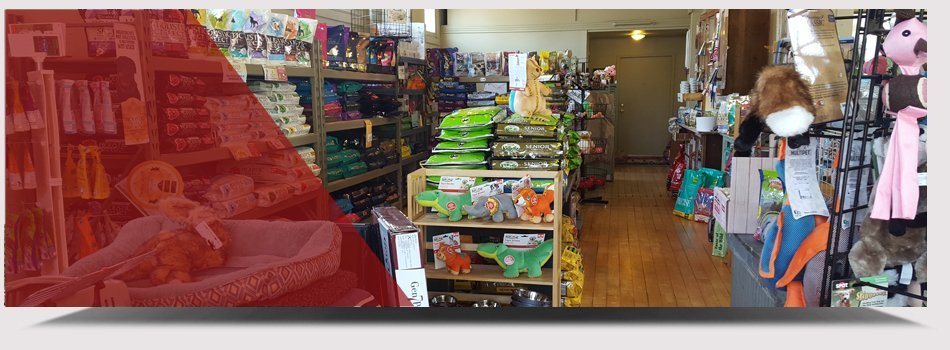 Dog treats | Indianapolis, IN | City Dogs Grocery  | 317-926-3647