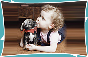 Child and pet on the carpet