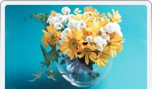 Every Day Flowers | Honesdale, PA | Honesdale Greenhouse Flower Shop | 570-253-3050