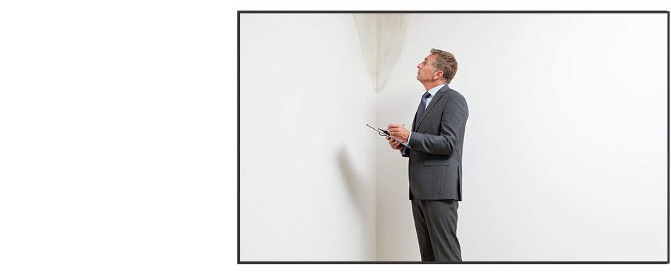 Mold inspection | Winneconne, WI | Best Informed Home Inspections LLC | 920-810-4145