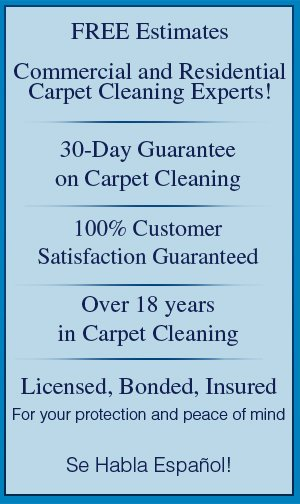 Carpet Cleaning - Portland,  OR - ACE Cleaning Service