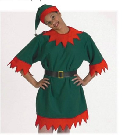 Elf Suit Costume for Rent