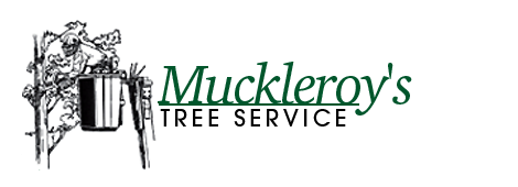 Muckleroy's Tree Service