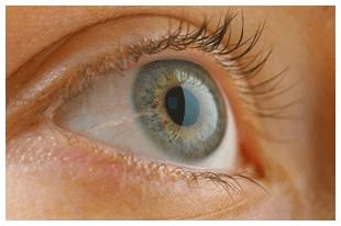 Ophthalmologic surgery - Lynbrook,  NY - Todd J Bragin MD PC