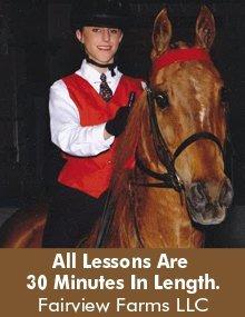 Horses - New Bloomfield, MO - Fairview Farms LLC