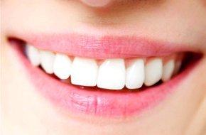 Elmhurst IL - Steven E. Erickson, DDS - Dental Insurance
