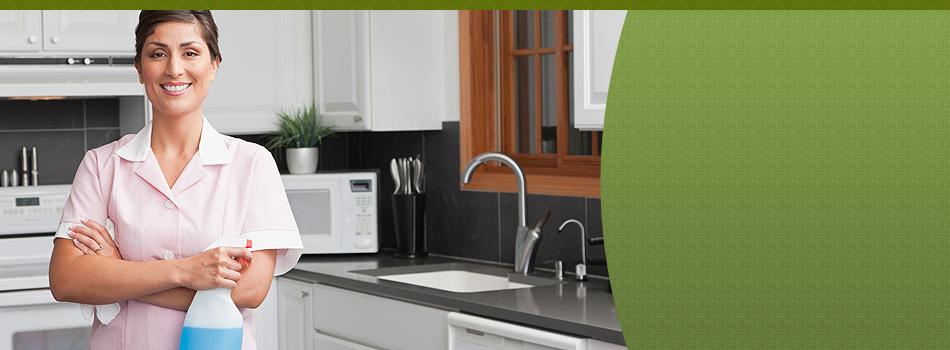 Window cleaning | Silverdale, WA | Greenshield Home & Carpet Care Inc. | 360-286-1905
