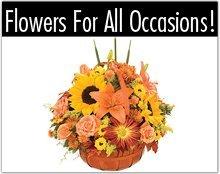 Florist - Toledo, OH - Bartz Viviano Flowers & Gifts