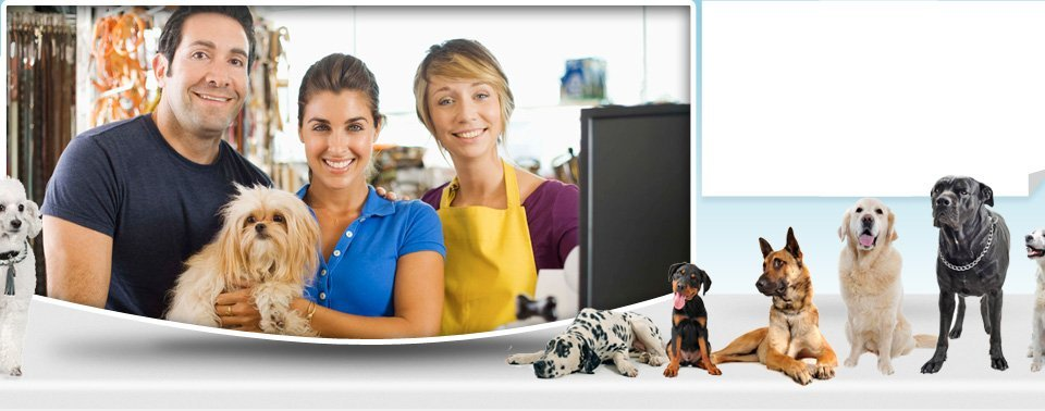 Dog grooming | Sun Prarie, WI | Canine Corner | 608-837-2626