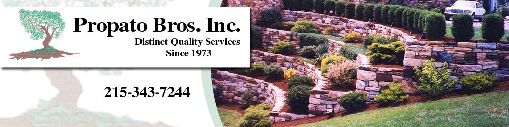Landscaping Contractors - Chalfont, PA  - Propato Bros. Inc.