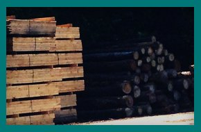 Bark | Williamsburg, MA | Lashway Forest Products | 413-268-3600