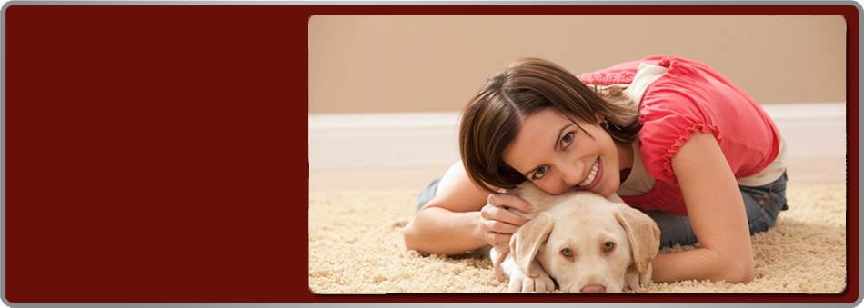 Upholstery cleaning | Brentwood, TN | Blazer Bros Expert Rug Cleaners | 615-221-0009