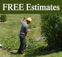 Tree Services - Benton, AR - Rockin B Tree Service
