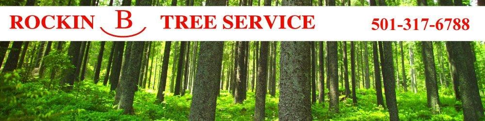 Tree Care - Benton, AR - Rockin B Tree Service