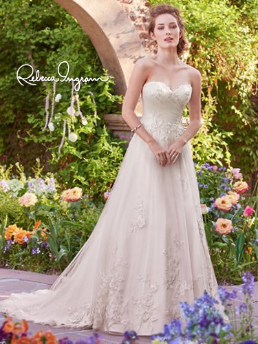 The french door bridal boutique a line gown photos sioux falls for Wedding dresses sioux falls