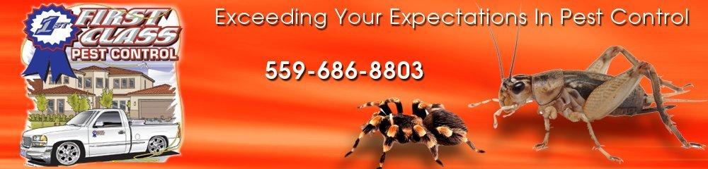 Pest Control Visalia, CA - First Class Pest Control 559-686-8803