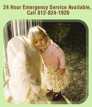 Pet - Bloomington, IN  - Farmstead Veterinary Service PC - Kid - 24 Hour Emergency Service Available, Call 812-824-1926
