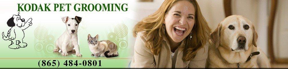 Pet Grooming Services New Market, TN - Kodak Pet Grooming