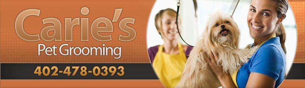 Arlington, NE - Pet Groomers - Carie's Pet Grooming