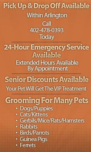 Pet Groomers - Arlington, NE - Carie's Pet Grooming