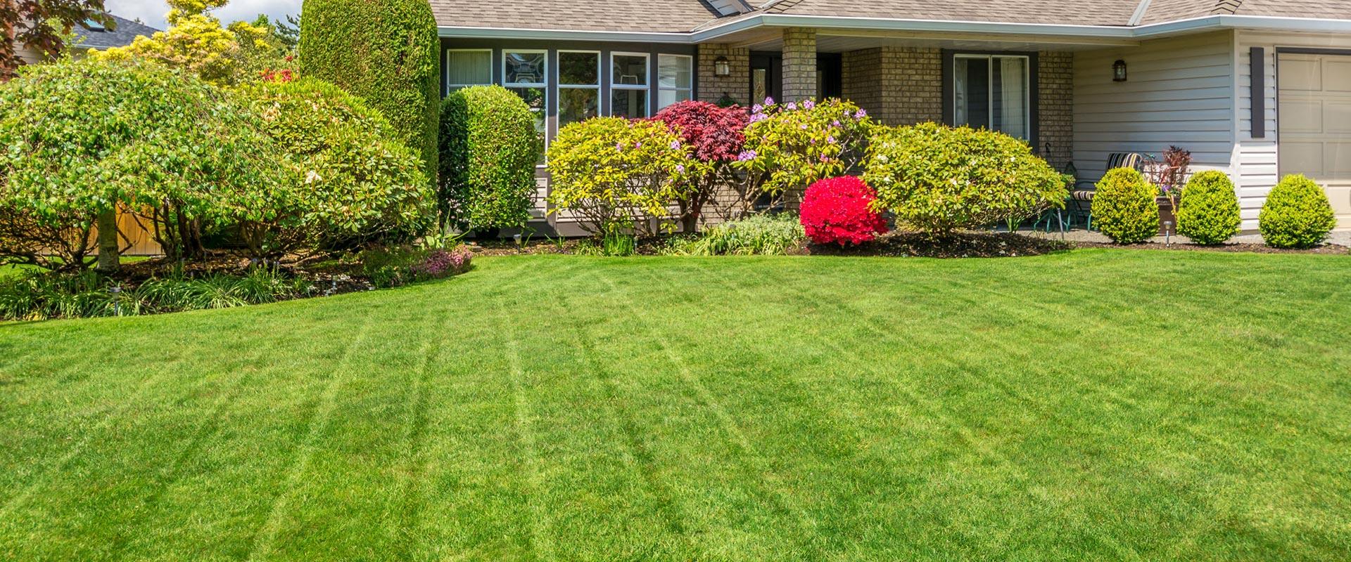 Marann jones landscape consultant gardening littlestown pa for Garden consultant