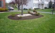 Mulch Installation