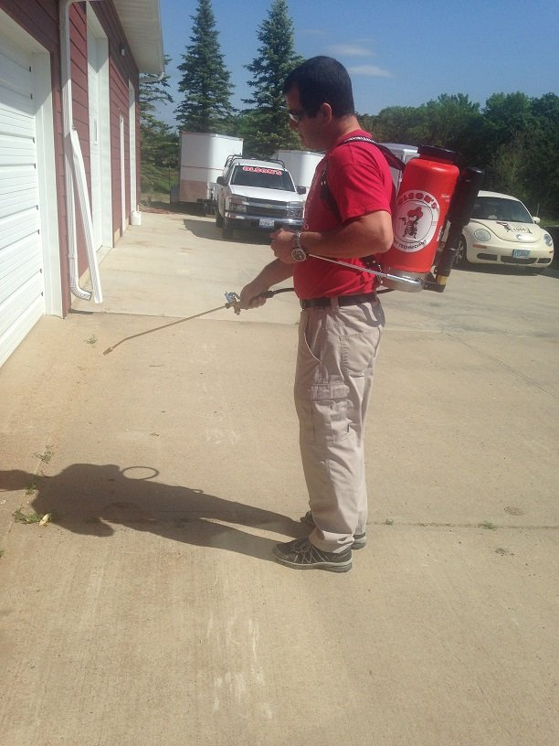 pest control technician skills chron com