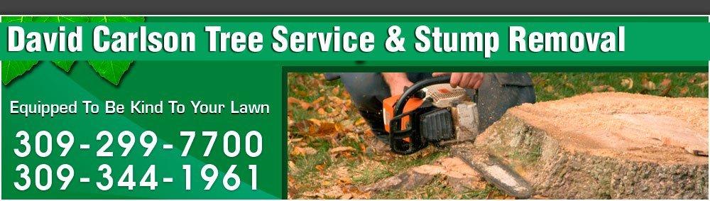 Tree Service Galesburg IL - David Carlson Tree Service & Stump Removal