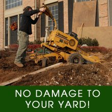 Lawn Care - Galesburg, IL - David Carlson Tree Service & Stump Removal - Grinding