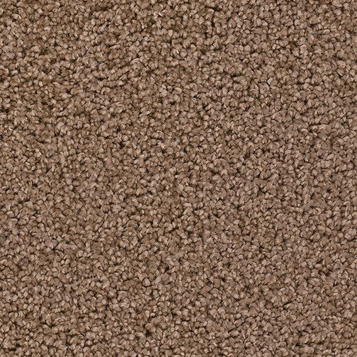 Carpet Floors Carpet Installations Jacksonville Fl