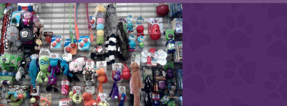 pet collars and leashes | Contact | Fang.Pan@hibu.com | 617-277-2627