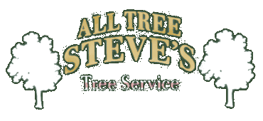 All Tree Steve's - Logo