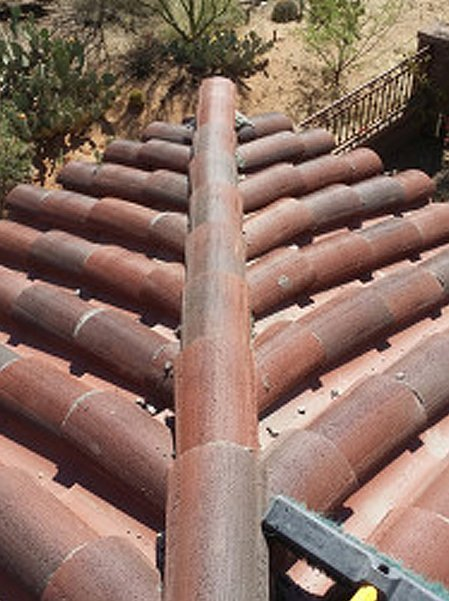 Tile roof and desert plant below