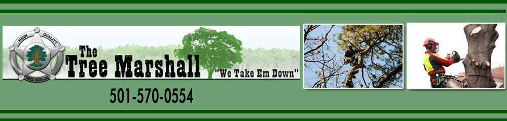 Little Rock , AR Tree Service - Tree Marshall 501-570-0554