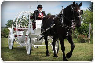 Special Events Carriages | Savannah, MO | Duncan Carriages | 816-390-5298