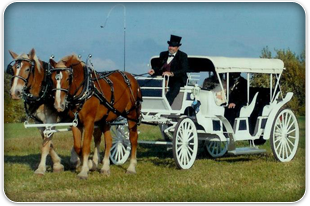 Wedding Carriages | Savannah, MO | Duncan Carriages | 816-390-5298