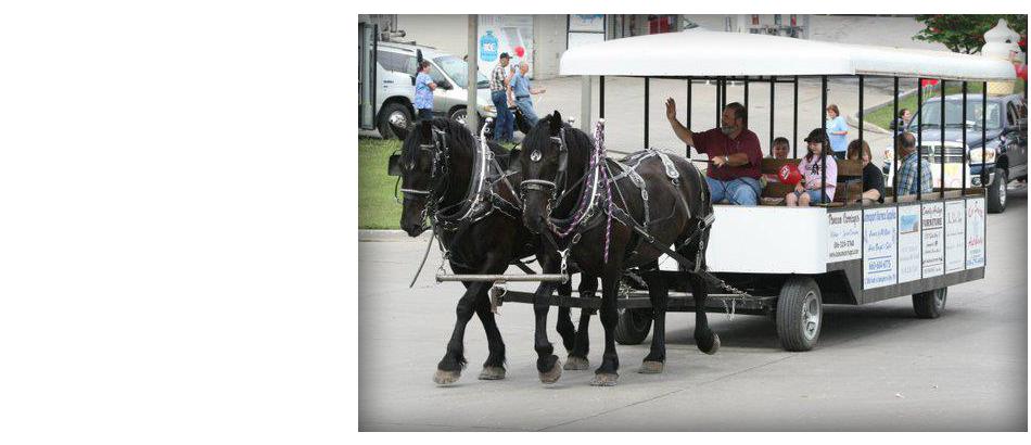 Horse-Drawn Trolleys   Savannah, MO   Duncan Carriages   816-390-5298