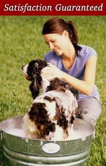 Dog Grooming - Potomac Highlands Distribution Area, WV - Hugs & Scrubs Dog Grooming