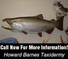 Taxidermy Service - New London, MO - Howard Barnes Taxidermy