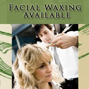 Salon - Fort Wayne, IN  - Fantasy Family Hair Inc - Facial Waxing Available