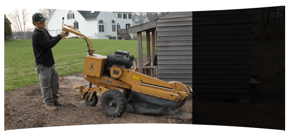 Reliable 24-hour stump removal service