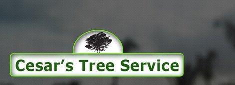 Cesar's Tree Service
