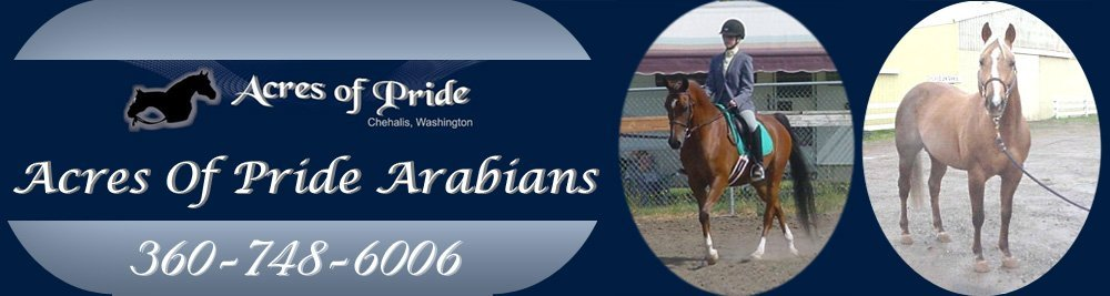Horse Boarding - Chehalis, WA - Acres Of Pride Arabians