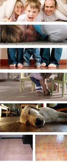Carpet - Twin Falls, ID - Mr. Steam's Valley Steam Carpet Clean - Clean Carpets